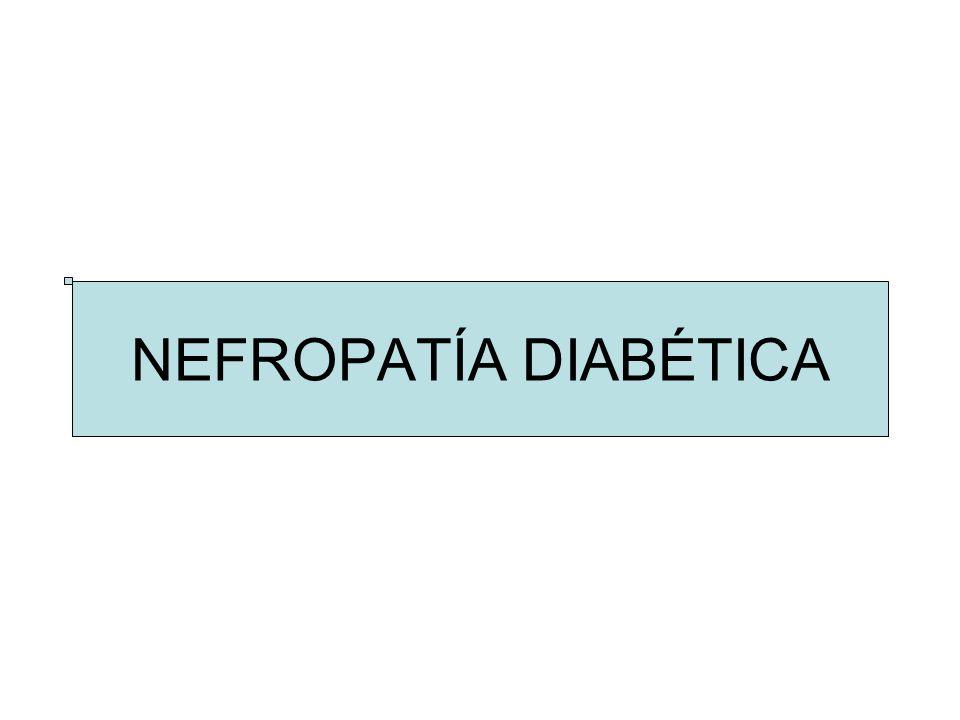 Otras medidas antiproteinúricas: –Espironolactona –Pioglitazona ERT: –Hemodiálisis: peor pronóstico (+ eventos CV, anemia, < tolerancia) –DP: soluciones con glucosa, peritonitis –Trasplante: riñón vs riñón-páncreas