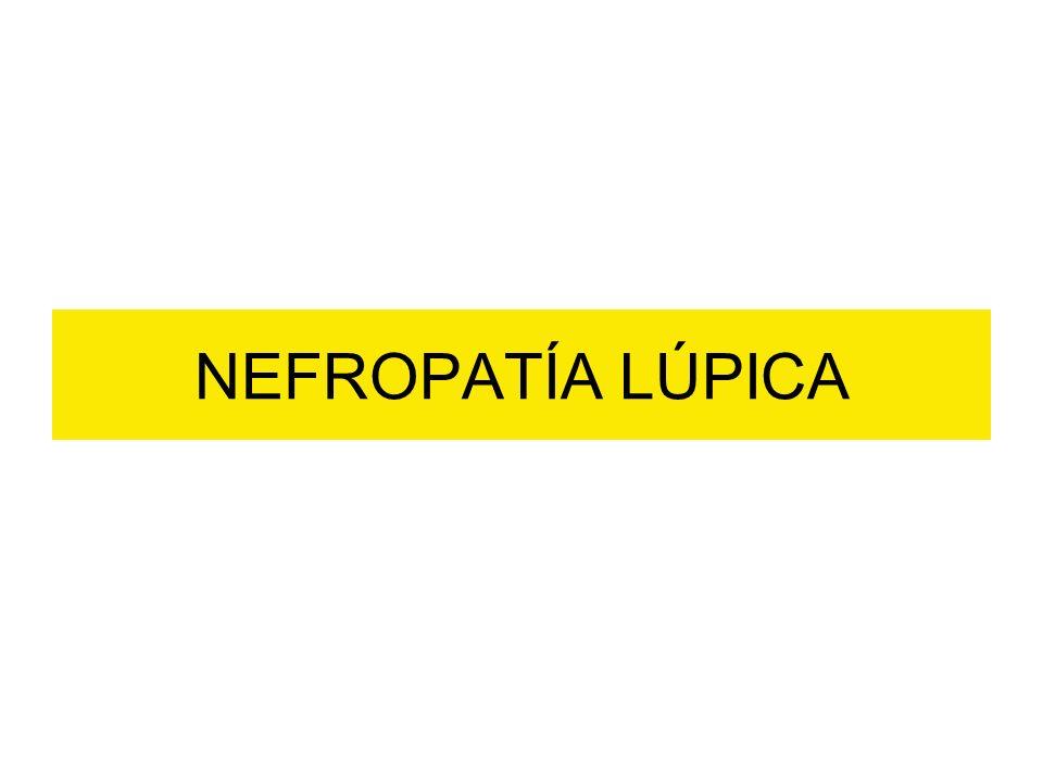 NEFROPATÍA LÚPICA
