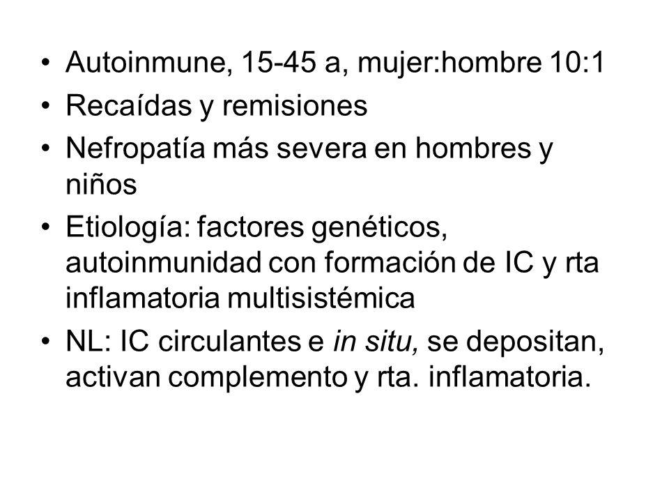 Autoinmune, 15-45 a, mujer:hombre 10:1 Recaídas y remisiones Nefropatía más severa en hombres y niños Etiología: factores genéticos, autoinmunidad con