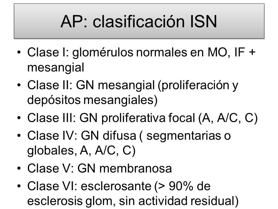 AP: clasificación ISN Clase I: glomérulos normales en MO, IF + mesangial Clase II: GN mesangial (proliferación y depósitos mesangiales) Clase III: GN