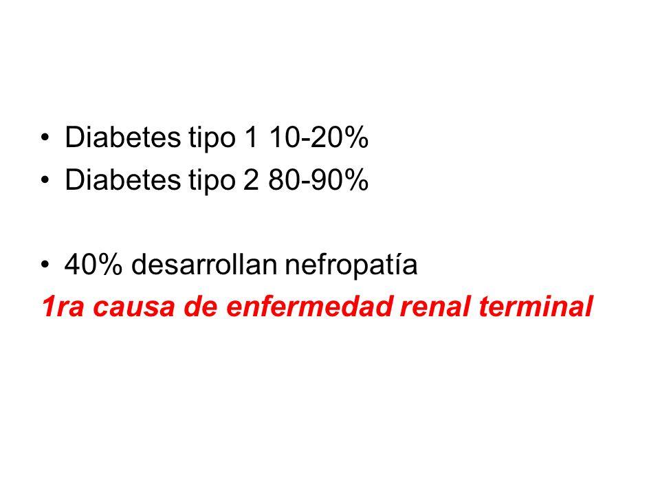 Diabetes tipo 1 10-20% Diabetes tipo 2 80-90% 40% desarrollan nefropatía 1ra causa de enfermedad renal terminal