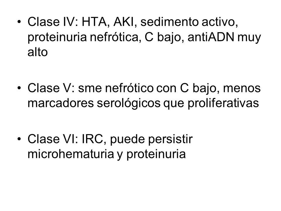 Clase IV: HTA, AKI, sedimento activo, proteinuria nefrótica, C bajo, antiADN muy alto Clase V: sme nefrótico con C bajo, menos marcadores serológicos