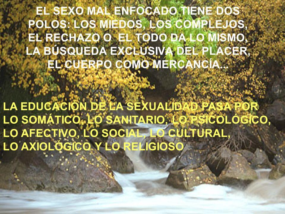 LA SEXUALIDAD SUPONE: AMOR A LA VIDA.APRECIO, RESPETO Y AMOR DEL PROPIO CUERPO Y EL DEL OTRO.