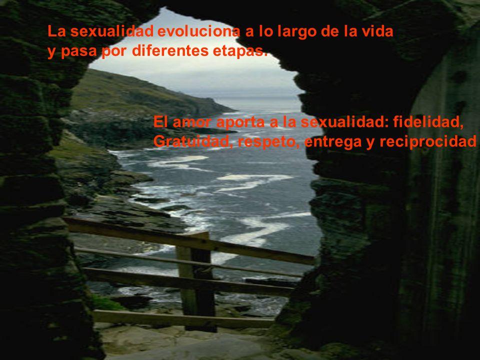 La sexualidad evoluciona a lo largo de la vida y pasa por diferentes etapas. El amor aporta a la sexualidad: fidelidad, Gratuidad, respeto, entrega y