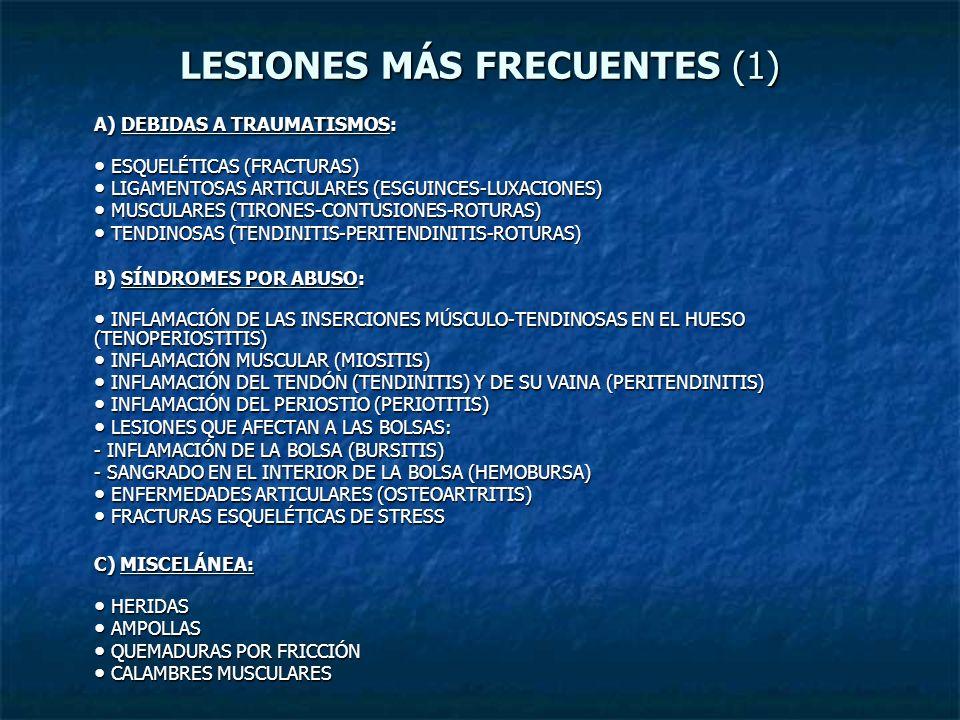 LESIONES MÁS FRECUENTES (1) A) DEBIDAS A TRAUMATISMOS: ESQUELÉTICAS (FRACTURAS) ESQUELÉTICAS (FRACTURAS) LIGAMENTOSAS ARTICULARES (ESGUINCES-LUXACIONE