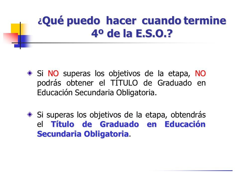 Estudios Militares Requisitos comunes: Requisitos comunes: español, sin antecedentes penales, buena conducta ciudadana, etc.