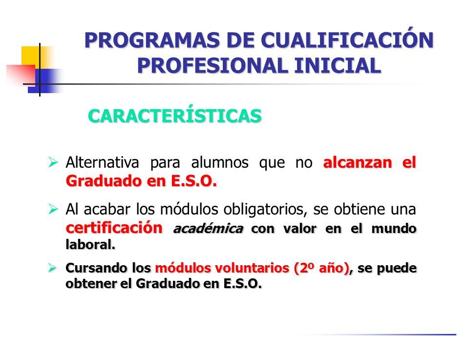 PROGRAMAS DE CUALIFICACIÓN PROFESIONAL INICIAL CARACTERÍSTICAS alcanzan el Graduado en E.S.O. Alternativa para alumnos que no alcanzan el Graduado en