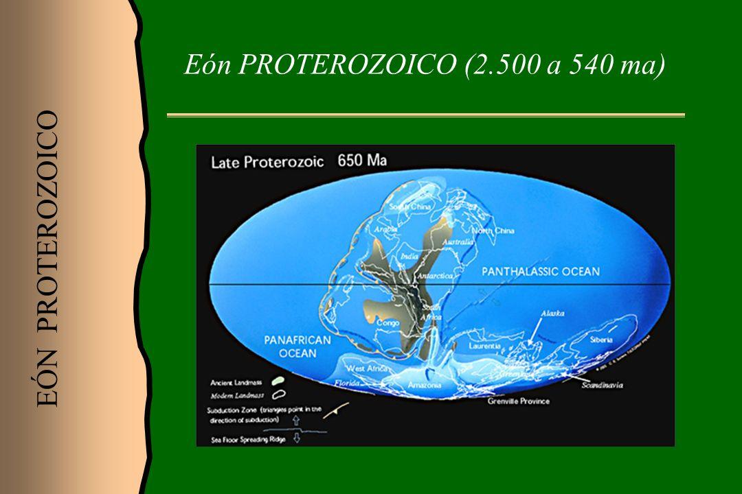 Eón PROTEROZOICO (2.500 a 540 ma) EÓN PROTEROZOICO