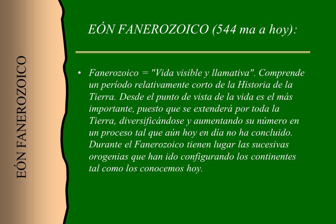 EÓN FANEROZOICO (544 ma a hoy): Fanerozoico =