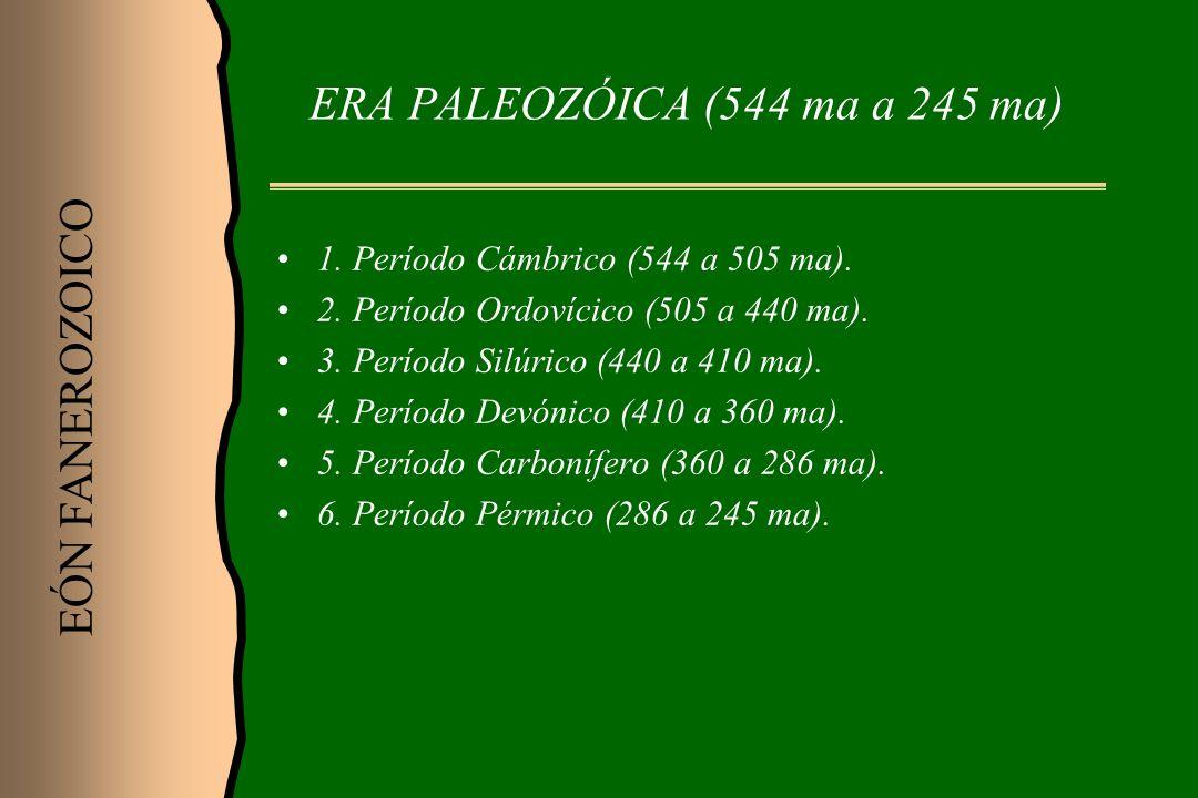 ERA PALEOZÓICA (544 ma a 245 ma) 1. Período Cámbrico (544 a 505 ma). 2. Período Ordovícico (505 a 440 ma). 3. Período Silúrico (440 a 410 ma). 4. Perí