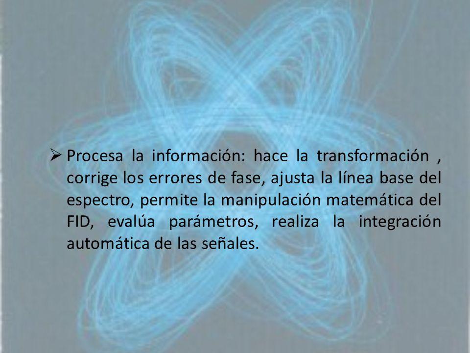 Procesa la información: hace la transformación, corrige los errores de fase, ajusta la línea base del espectro, permite la manipulación matemática del