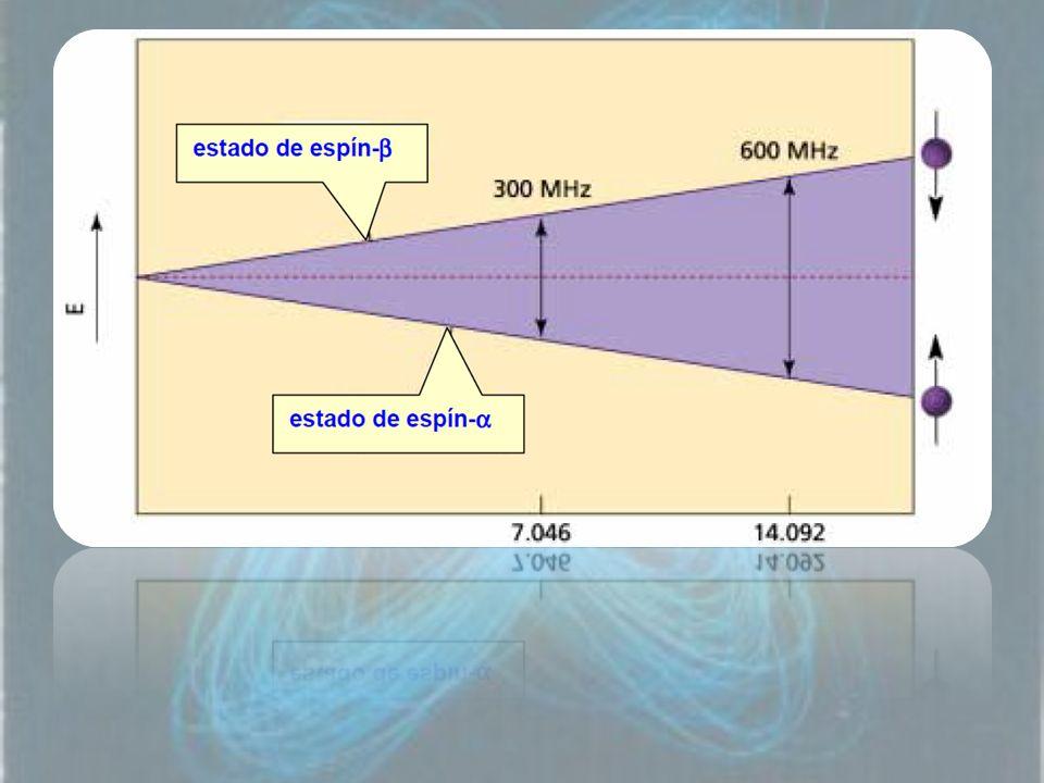 En ausencia de campo magnético, los espines nucleares se orientan al azar.