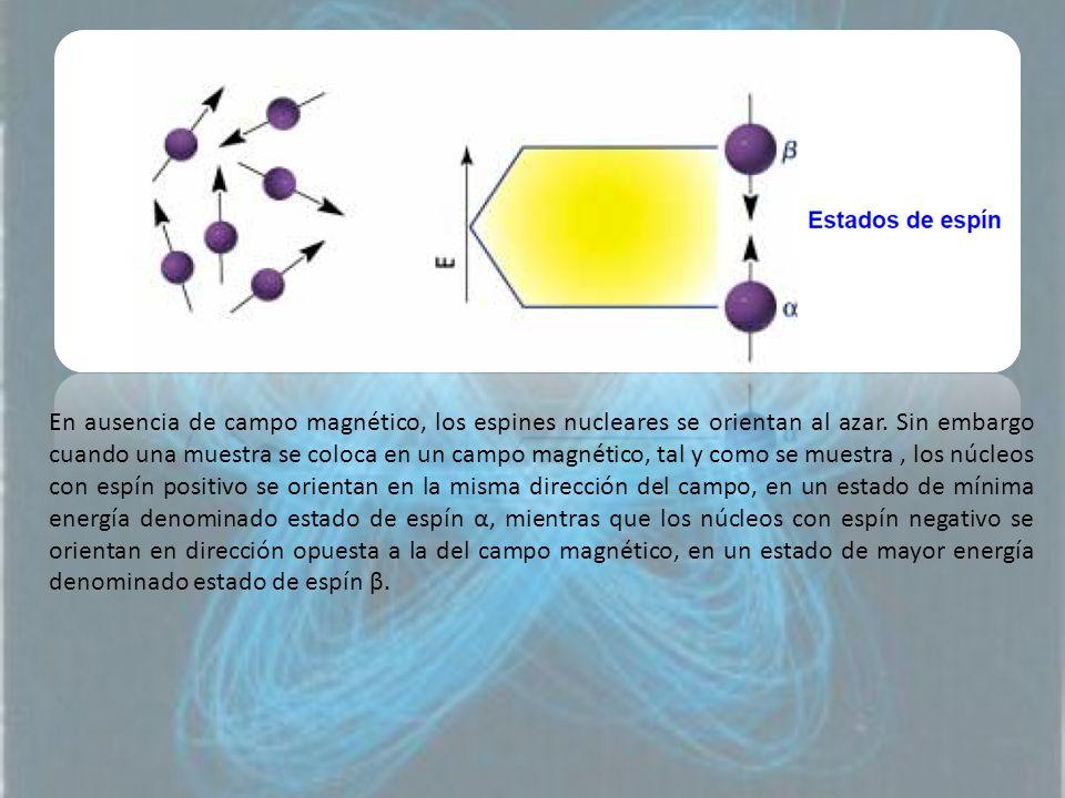 En ausencia de campo magnético, los espines nucleares se orientan al azar. Sin embargo cuando una muestra se coloca en un campo magnético, tal y como