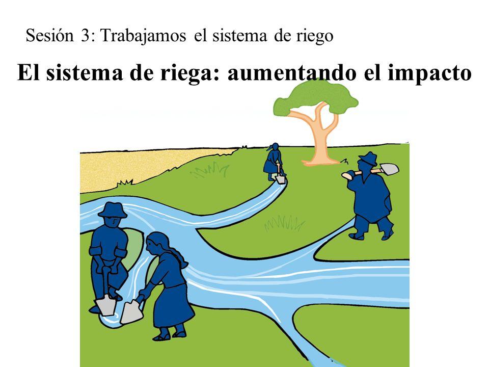 El sistema de riega: aumentando el impacto Sesión 3: Trabajamos el sistema de riego