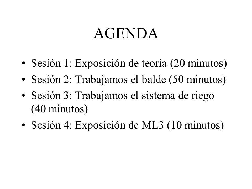 AGENDA Sesión 1: Exposición de teoría (20 minutos) Sesión 2: Trabajamos el balde (50 minutos) Sesión 3: Trabajamos el sistema de riego (40 minutos) Se