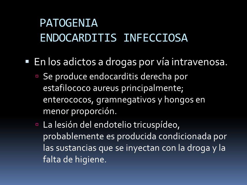 PATOGENIA ENDOCARDITIS INFECCIOSA En los adictos a drogas por vía intravenosa. Se produce endocarditis derecha por estafilococo aureus principalmente;