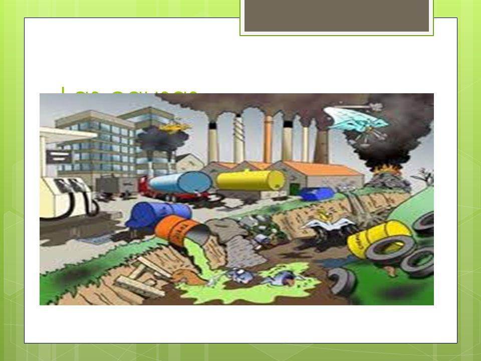 Posibles soluciones de la contaminación del suelo Con respecto al primer problema la posible solución sería la utilización de plaguicidas orgánicos, los cuales dañarían menos a la naturaleza y en particular al suelo.