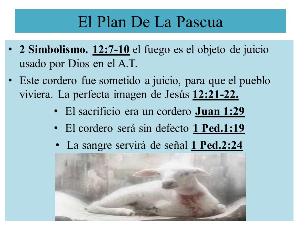 El Plan De La Pascua 2 Simbolismo. 12:7-10 el fuego es el objeto de juicio usado por Dios en el A.T. Este cordero fue sometido a juicio, para que el p