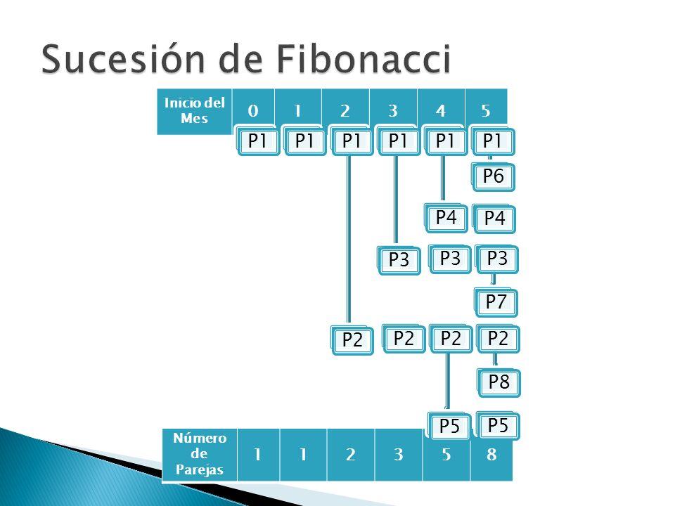 Inicio del Mes 012345 Número de Parejas 112358 P1 P2P1P3P1P4P1P6P3 P7P2 P5P2P8P4P5
