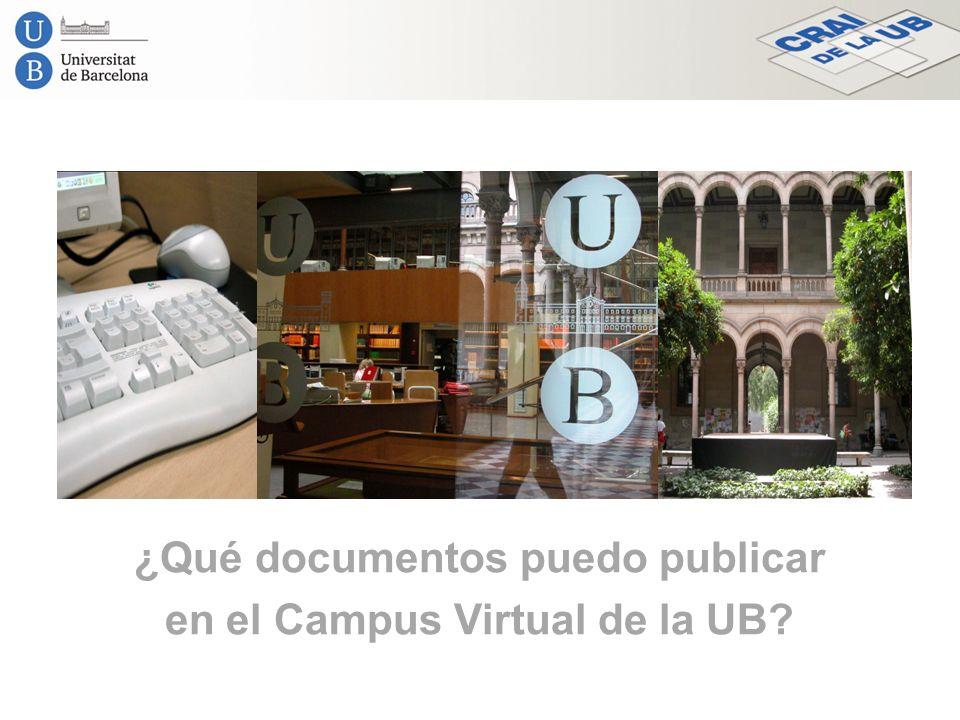 ¿Qué documentos puedo publicar en el Campus Virtual de la UB?