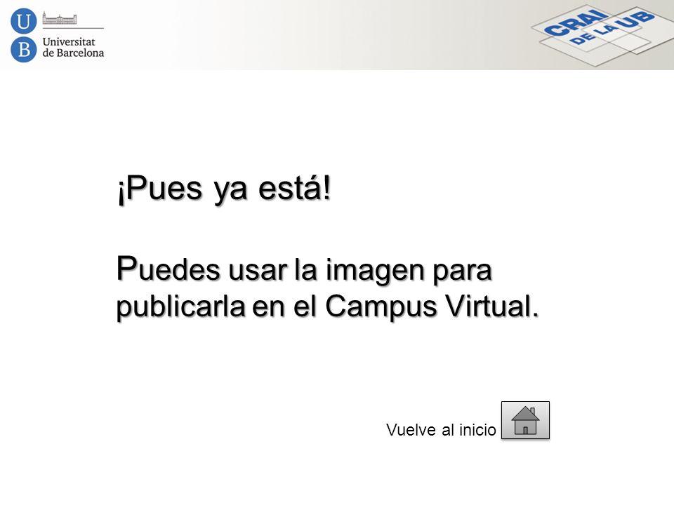 ¡Pues ya está! P uedes usar la imagen para publicarla en el Campus Virtual. Vuelve al inicio