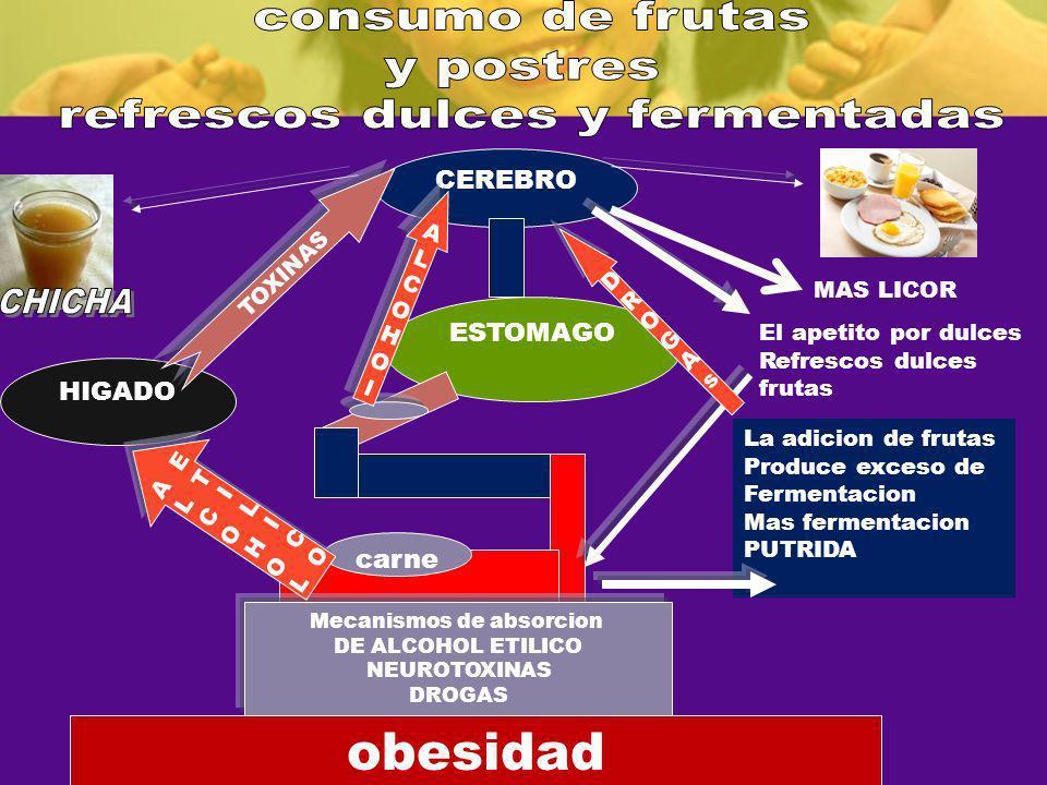CEREBRO ESTOMAGO HIGADO La adicion de frutas Produce exceso de Fermentacion Mas fermentacion PUTRIDA carne El apetito por dulces Refrescos dulces frut