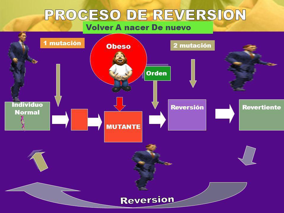Individuo Normal 1 mutación MUTANTE 2 mutación ReversiónRevertiente Volver A nacer De nuevo Orden Obeso