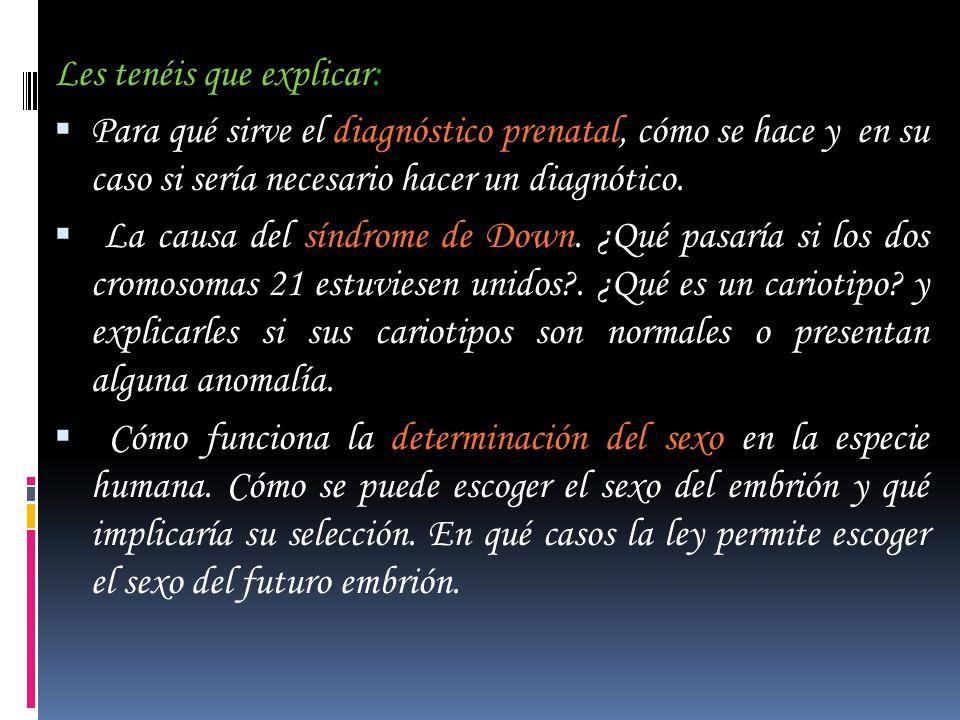Les tenéis que explicar: Para qué sirve el diagnóstico prenatal, cómo se hace y en su caso si sería necesario hacer un diagnótico. La causa del síndro
