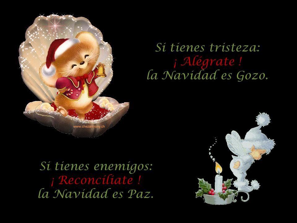 Si tienes tristeza: ¡ Alégrate ! la Navidad es Gozo. Si tienes enemigos: ¡ Reconcíliate ! la Navidad es Paz.