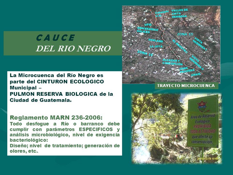 C A U C E DEL RIO NEGRO TRAYECTO MICROCUENCA La Microcuenca del Río Negro es parte del CINTURON ECOLOGICO Municipal – PULMON RESERVA BIOLOGICA de la C