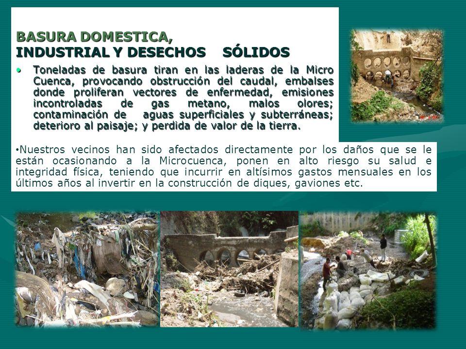 BASURA DOMESTICA, INDUSTRIAL Y DESECHOS SÓLIDOS Toneladas de basura tiran en las laderas de la Micro Cuenca, provocando obstrucción del caudal, embals