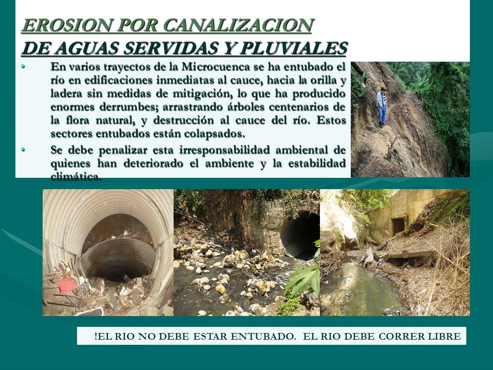 EROSION POR CANALIZACION DE AGUAS SERVIDAS Y PLUVIALES En varios trayectos de la Microcuenca se ha entubado el río en edificaciones inmediatas al cauc