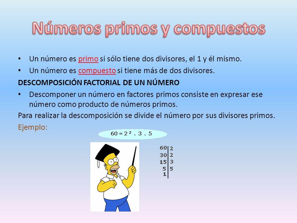 Un número es primo si sólo tiene dos divisores, el 1 y él mismo.