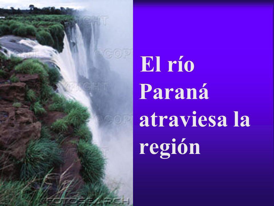 El río Paraná atraviesa la región