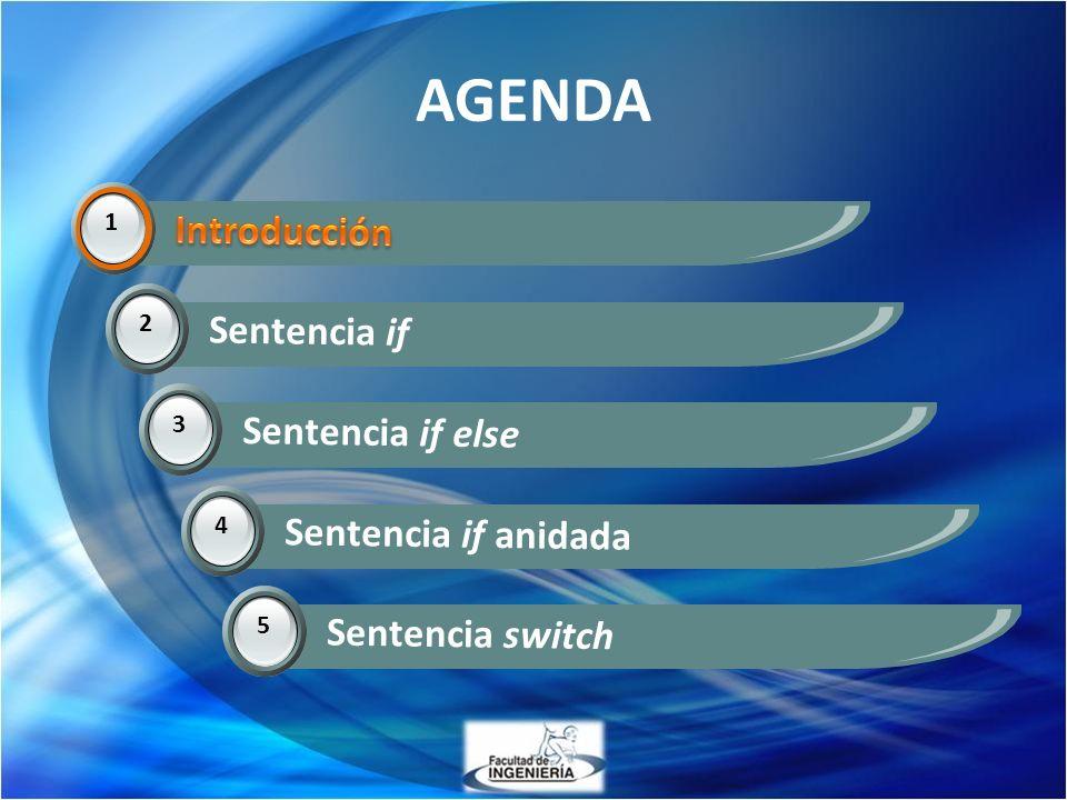 AGENDA 1 Introducción 2 Sentencia if 3 Sentencia if else 14 Sentencia if anidada 5 Sentencia switch