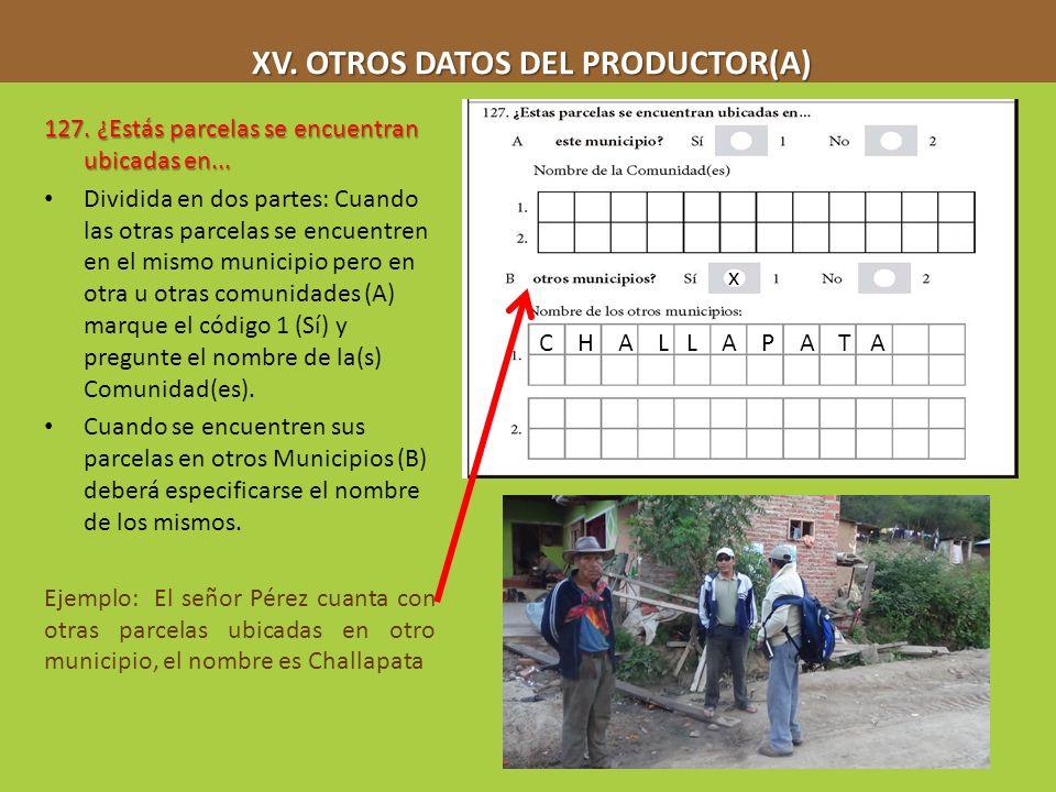 XV. OTROS DATOS DEL PRODUCTOR(A) XV. OTROS DATOS DEL PRODUCTOR(A) 127. ¿Estás parcelas se encuentran ubicadas en... Dividida en dos partes: Cuando las