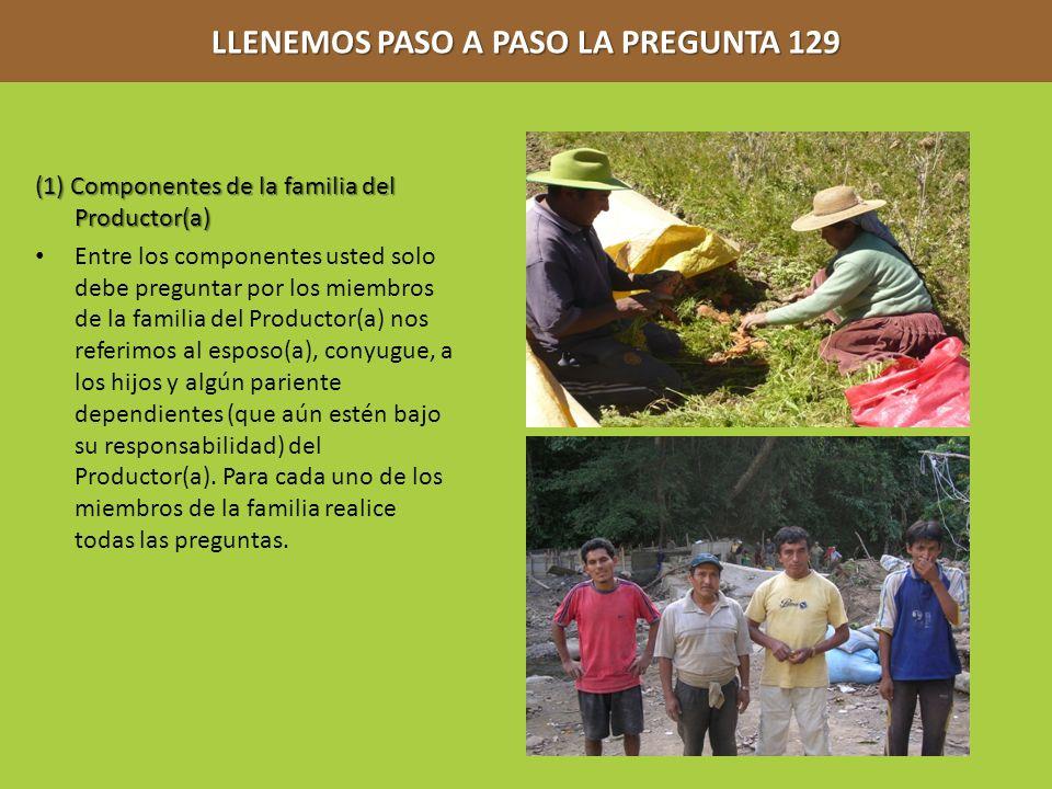 LLENEMOS PASO A PASO LA PREGUNTA 129 (1) Componentes de la familia del Productor(a) Entre los componentes usted solo debe preguntar por los miembros d