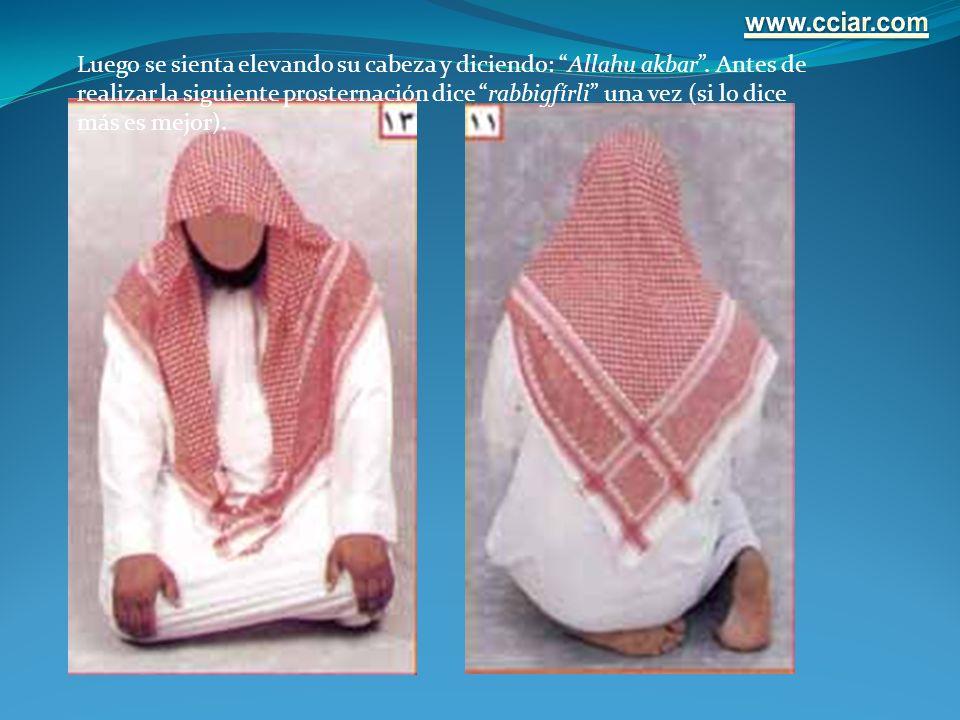 Luego se sienta elevando su cabeza y diciendo: Allahu akbar. Antes de realizar la siguiente prosternación dice rabbigfírli una vez (si lo dice más es