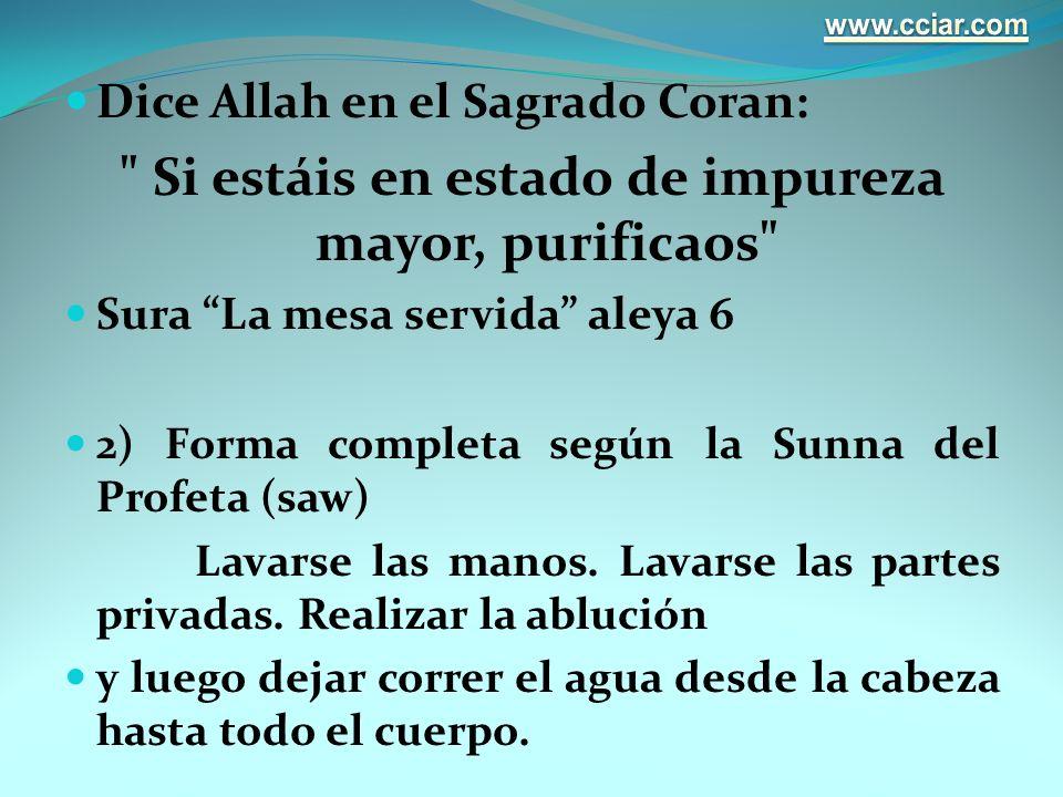 Dice Allah en el Sagrado Coran: