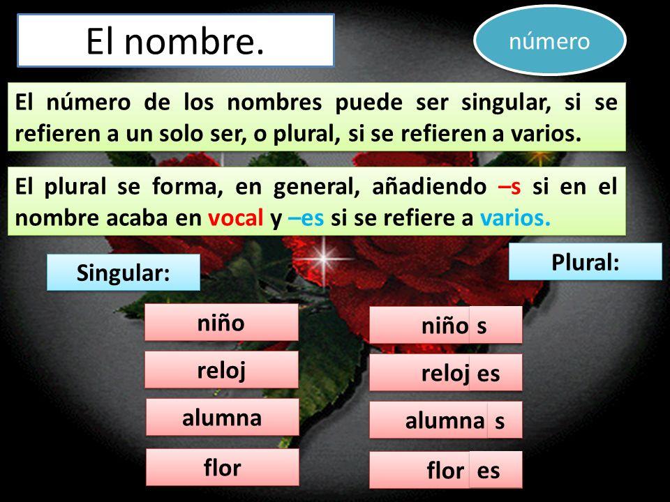 El nombre. El número de los nombres puede ser singular, si se refieren a un solo ser, o plural, si se refieren a varios. El número de los nombres pued