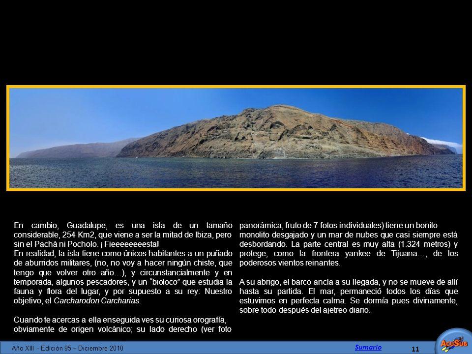 En cambio, Guadalupe, es una isla de un tamaño considerable, 254 Km2, que viene a ser la mitad de Ibiza, pero sin el Pachá ni Pocholo. ¡ Fieeeeeeeesta