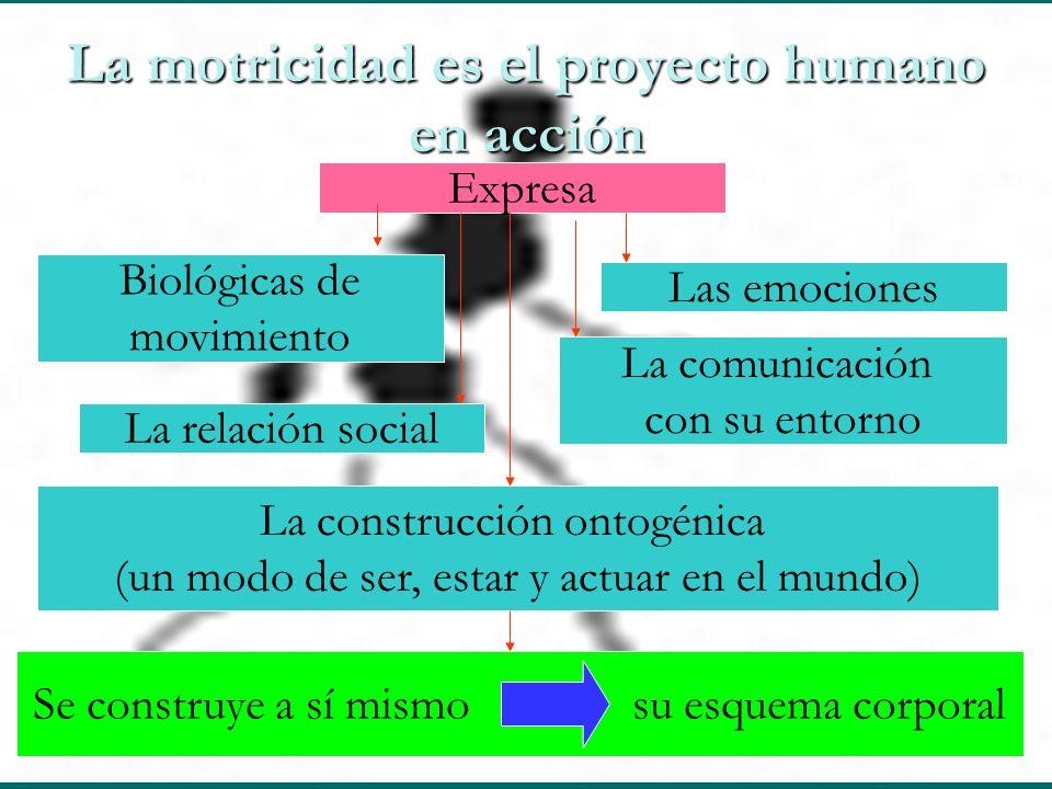 La motricidad es el proyecto humano en acción Expresa Las emociones La relación social Biológicas de movimiento La construcción ontogénica (un modo de