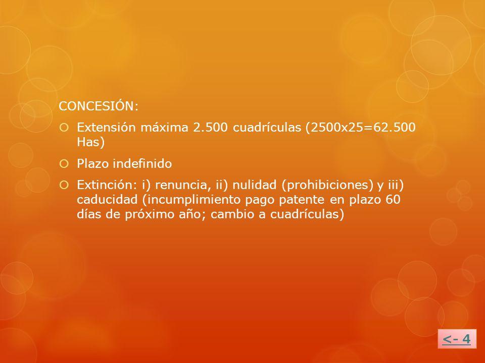CONCESIÓN: Extensión máxima 2.500 cuadrículas (2500x25=62.500 Has) Plazo indefinido Extinción: i) renuncia, ii) nulidad (prohibiciones) y iii) caducid