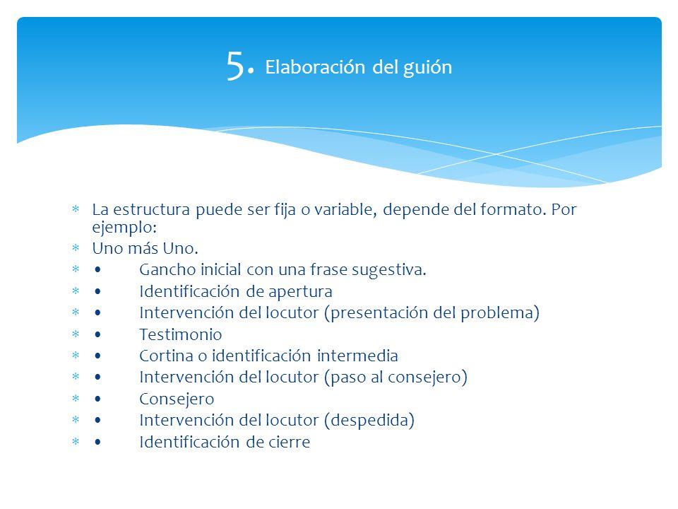 5.Elaboración del guión La estructura puede ser fija o variable, depende del formato.