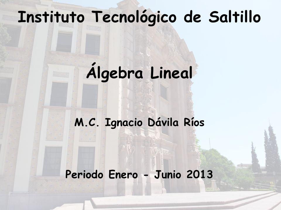 Instituto Tecnológico de Saltillo Álgebra Lineal M.C.