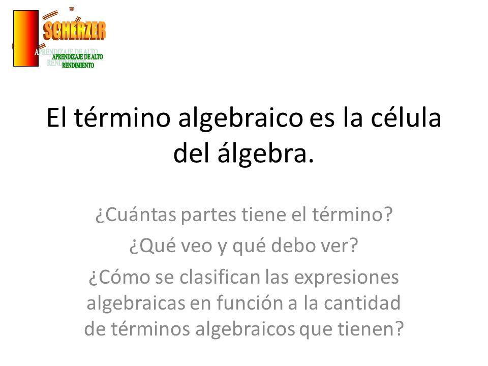 El término algebraico es la célula del álgebra. ¿Cuántas partes tiene el término? ¿Qué veo y qué debo ver? ¿Cómo se clasifican las expresiones algebra