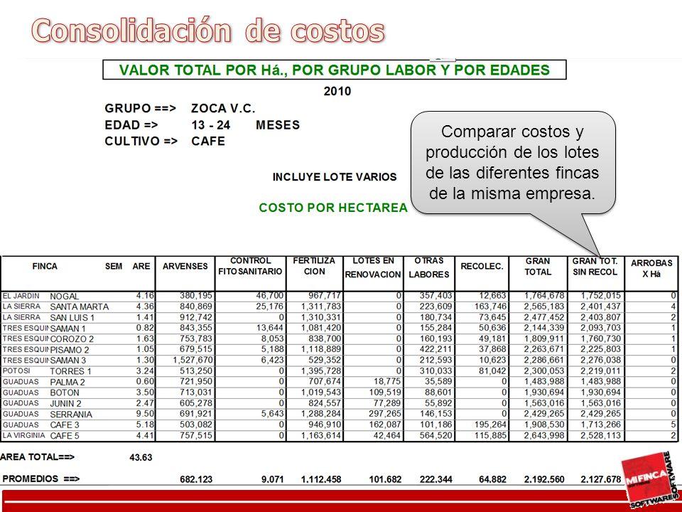 Consolidación de costo por grupos de labores por lote Comparar costos y producción de los lotes de las diferentes fincas de la misma empresa.
