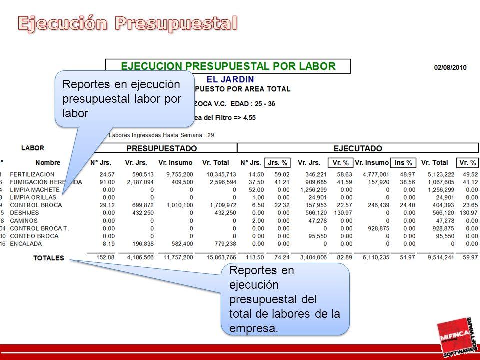 Reportes en ejecución presupuestal labor por labor Reportes en ejecución presupuestal del total de labores de la empresa.
