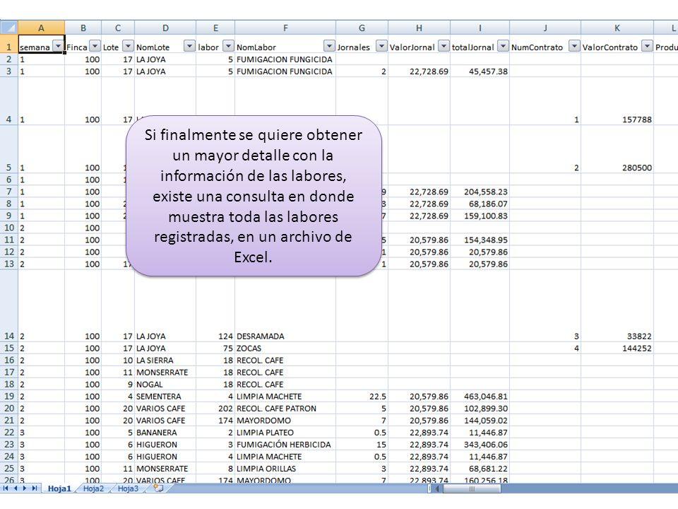Si finalmente se quiere obtener un mayor detalle con la información de las labores, existe una consulta en donde muestra toda las labores registradas, en un archivo de Excel.