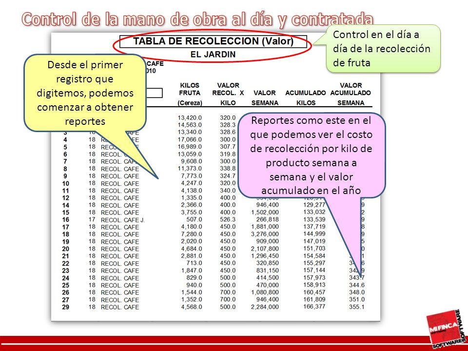 Desde el primer registro que digitemos, podemos comenzar a obtener reportes Reportes como este en el que podemos ver el costo de recolección por kilo de producto semana a semana y el valor acumulado en el año Control en el día a día de la recolección de fruta